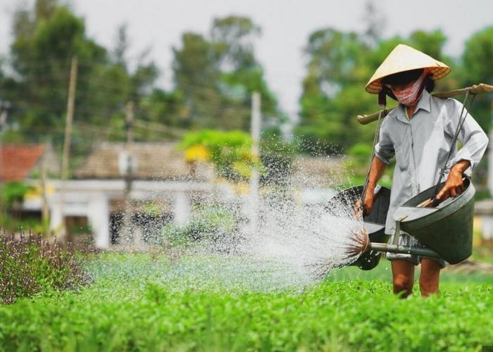 làng đúc đồng Phước Kiều