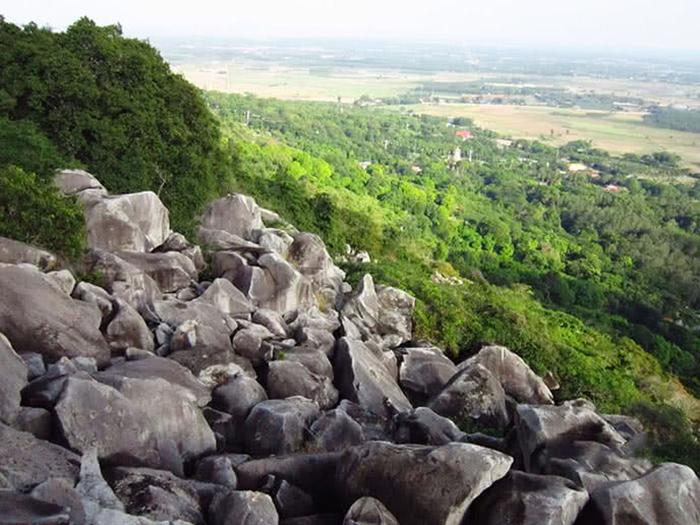 thằn lằn núi Tây Ninh